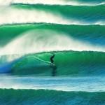 study surfing australia
